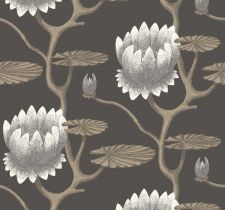 Cole & Son, Contemporary Restyled, арт. 95/4026